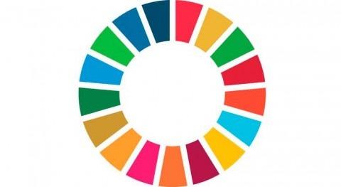 ¿Cómo propone ONU-Agua monitorear objetivo agua y saneamiento ODS?