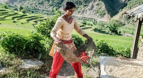 cambio climático y pérdida biodiversidad aumentan hambre montañas