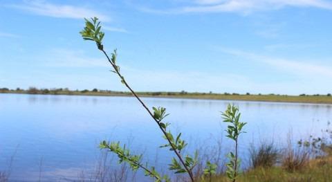 protección y restauración río Santa Lucía, prioridad Uruguay