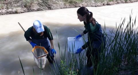 Arranca campaña toma muestras servicios evaluación ecológica Guadalope