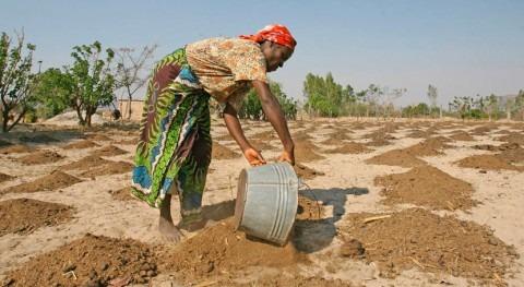 23 millones personas África austral necesitan ayuda urgente debido sequía