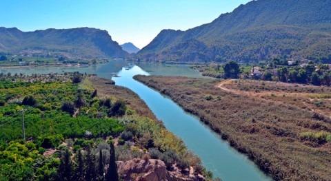 UPA-Murcia considera últimas lluvias Murcia como beneficiosas agricultura