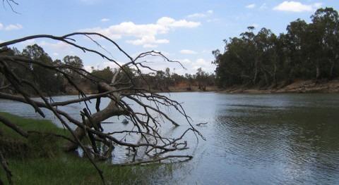 ¿Cuál es río más largo Australia?