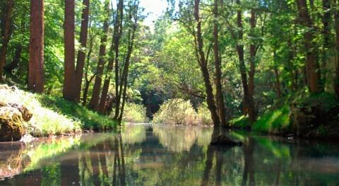 Ebro ralentizó llegada nuevas poblaciones y culturas durante Paleolítico
