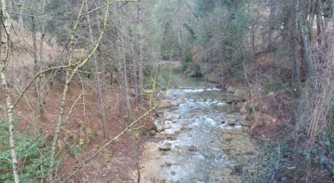¿Cómo detectar pesticidas ríos?