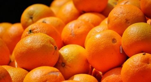 cáscaras frutas, materia prima nuevo material que limpia aguas contaminadas