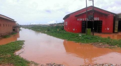 Mueren siete personas causa inundaciones y deslizamientos tierra este Uganda