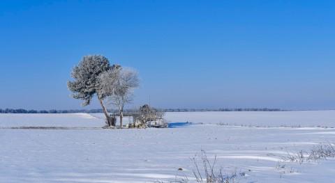 """¿""""Año nieves, año bienes"""" pleno calentamiento global?"""