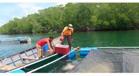 Pescadoras y pescadores Nicaragua trabajan combatir efectos cambio climático