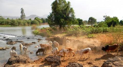 Etiopía acepta mediación EE.UU. disputa Egipto construcción presa