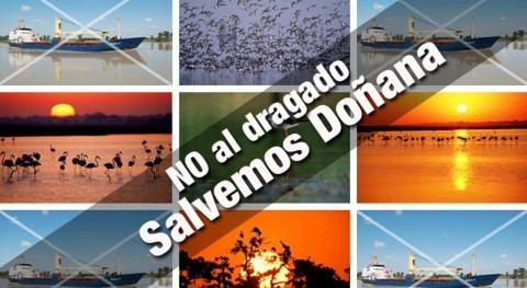 Puerto Sevilla renuncia al dragado Guadalquivir