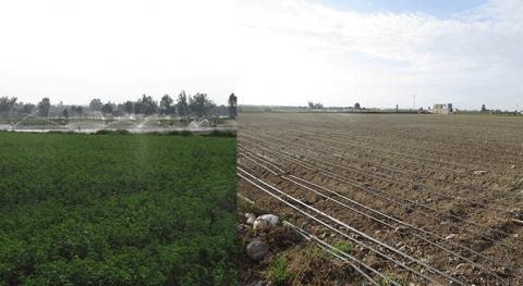 ANA elabora estudio determinar demanda agua irrigación Joya