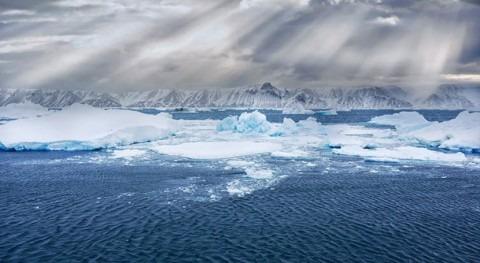 océano singular: riqueza ecológica Antártico y importancia clima global