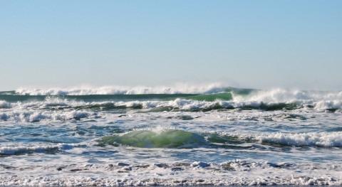 Urge tomar medidas preservación océanos