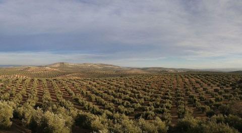 tierra cultivada España no es suficiente alimentar país