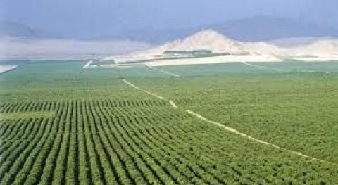 ANA aprueba trasvase como solución falta lluvia región peruana Olmos
