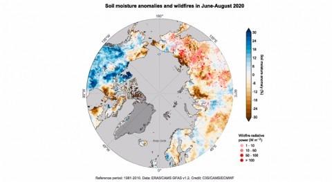 año 2020 ha sido año más cálido Europa 1983 récord lluvias y horas sol