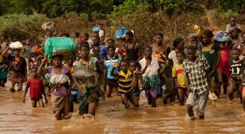 lucha cambio climático: 2020 y COVID-19 nos han dado ultimátum
