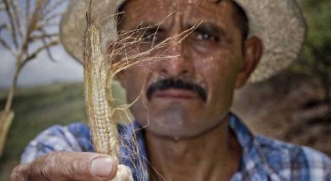 Centroamérica y República Dominicana se unen aridez causada cambio climático