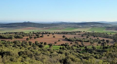 organizaciones agrarias consideran que EIA tierras raras no se entregó plazo