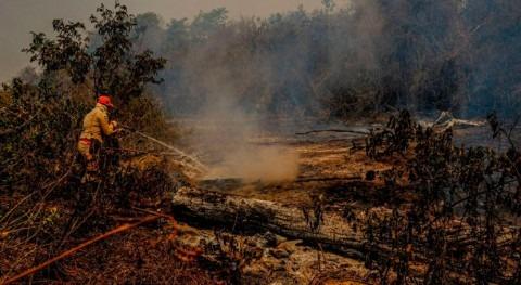 Científicos identifican causas extrema sequía que afectó al Pantanal Brasil