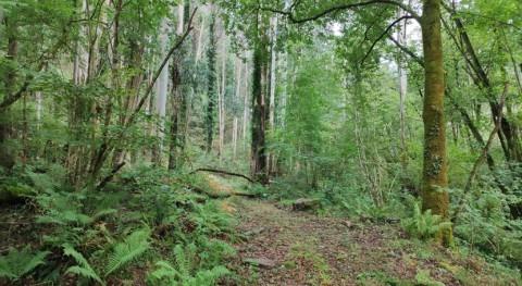 Álava invertirá casi 2 millones euros gestión parques naturales y Museo Agua