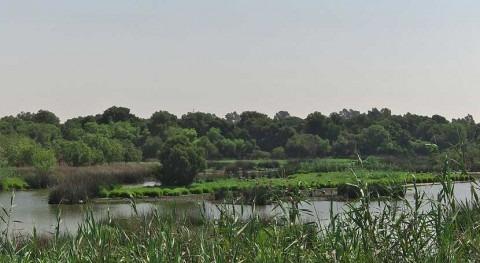 ONG ambientales pedirán España que proteja Directiva Marco Agua Europa