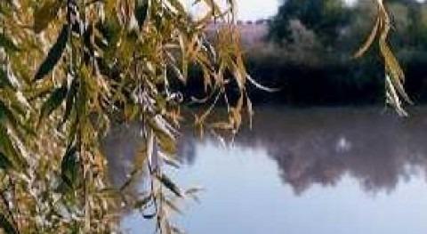 paso elevado arroyo Conejo Palacios y Villafranca garantizará paso cuando haya crecidas