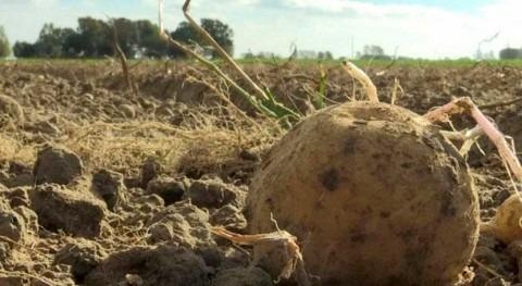 Europarlamento propone nuevas reglas promover reutilización agua agricultura