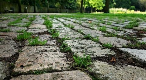 Adaptar ciudades al cambio climático mediante transformación pavimentos urbanos