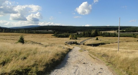 Polonia agrega tres nuevos sitios Lista Ramsar