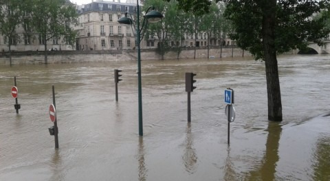 Peligro Louvre: ¡se ahoga Venus Milo!