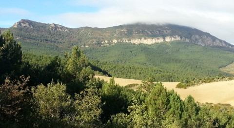 LIC Peña Izaga, designado como Zona Especial Conservación