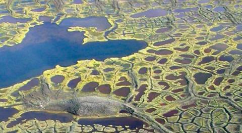 Es deshielo permafrost oscurece lagos árticos