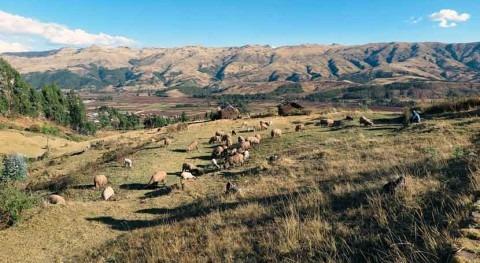 Perú fortalece mejora calidad servicios agua potable y saneamiento Tacna