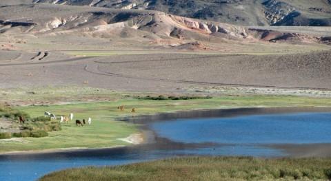 Perú declara emergencia hídrica varias zonas agrarias