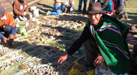 Ser climáticamente inteligentes Perú: Crear agua donde no hay y papas resistentes heladas