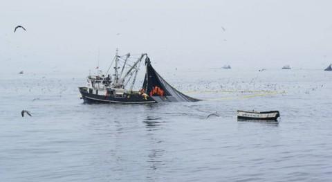 nuevo informe evalúa impacto Niño pesca y acuicultura nivel mundial