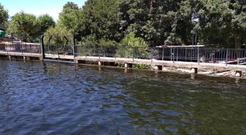 Piscinas Naturales: uso racional agua coste cero y máximo respeto medioambiente