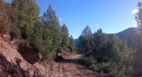CHE mejora pistas forestales montes que gestiona provincia Huesca
