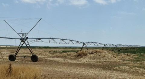 dehesa Llanos, tecnología gestión agua y producción alimentos calidad