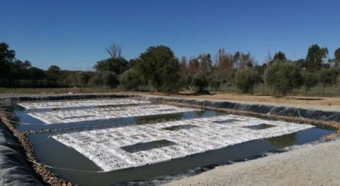 TecnoConverting Portugal suministra primer humedal artificial