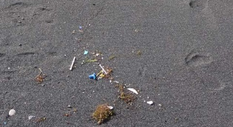 Contaminantes prioritarios presentes microplásticos depositados playas Gran Canaria