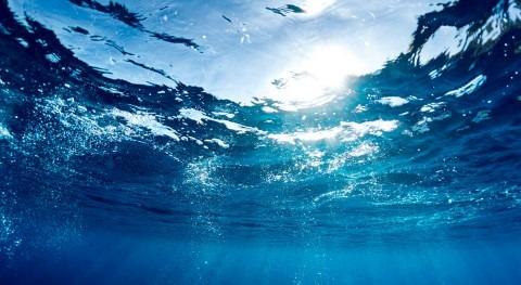 2017: año que nació Almar Water Solutions