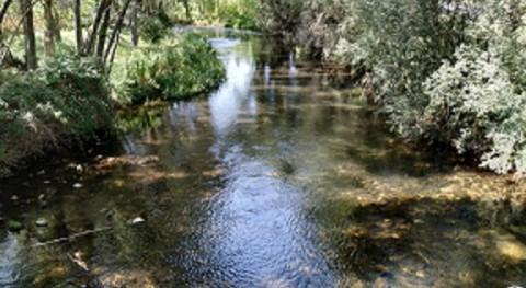 Estado agua: España y Europa