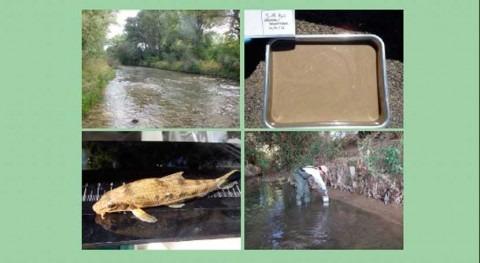 Publicado informe anual red control sustancias peligrosas cuenca Ebro