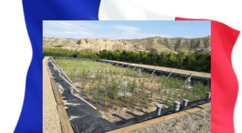 Tratamiento aguas residuales mediante humedales artificiales: Sistema Francés (I)