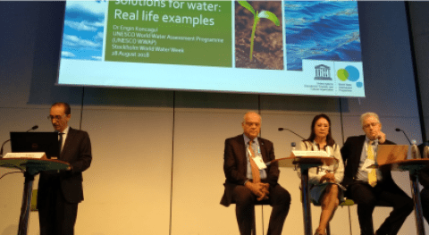 Soluciones verdes, núcleo Semana Mundial Agua 2018