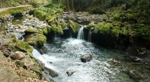 Tepa río Tancochin