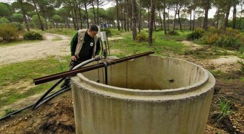 ¿Cómo afecta trasvase Doñana problema agua zona?